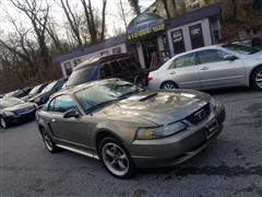 2001 FORD MUSTANG Standard/Deluxe/Premium